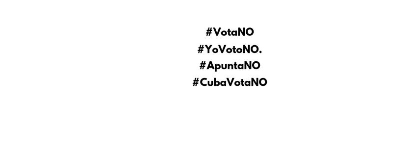 Oposición y sociedad civil: «Acordamos promover el NO a la nueva Constitución porque es antidemocrática y no resuelve los problemas de los cubanos»