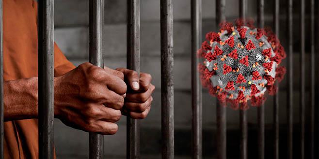 OCDH pide a Primer Ministro cubano que libere a todos los presos políticos